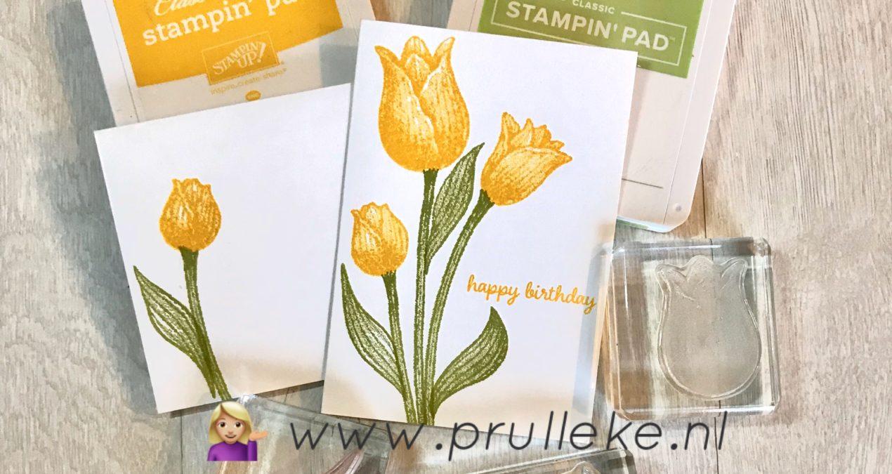 Timeless Tulips beginnerkaart